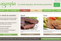 sagaspia.fr
